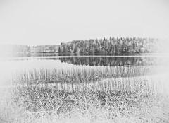 Straight lines (Johan Fredlund) Tags: ice icescape blackandwhite beutiful fineart water snow samsung samsungnx500 nx500 nx nxseries landscape seascape sea landscapeporn lake black white milkywhite blackwhite bw becausewelovesweden naturebw natur asomwe wonderfully awesome erth nature north finspång sweden scandinavia sverige 1650mm f11