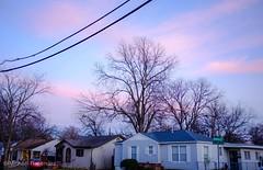 (photo.po) Tags: fujifilmx100 fujifilm trees landscape urban neighborhood house sky pink sunset clouds