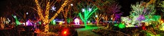 River of Lights ABQ BioPark (JoelDeluxe) Tags: rol riveroflights abq biopark nm december 2018 albuquerque biological park pnm light display colors lights sculptures fantasy newmexico hdr joeldeluxe