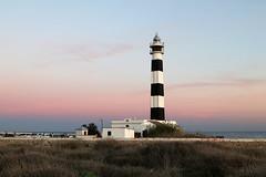 Far d'Artrutx at dawn (jk_cycling) Tags: leuchtturm faro lighthouse phare menorca spanien spain ilesbalears sesiles balearen balearicislands dawn sunset sonxoriguer calaenbosc artrutx
