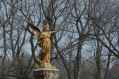 DSC_7526a (Fransois) Tags: ange angel appel call résurrection resurrection anastasis trompette trumpet cimetière cemetery graveyard côtedesneiges montréal québec resurrexit