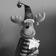 The Christmas present.... (markwilkins64) Tags: christmas scarf hat bell smile present markwilkins ornament animal moose reindeer mono monochrome blackandwhite bw sweet cute amusing sidelight sidelit shadows macro joy happy texture wool christmaspresent