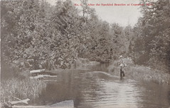 """NW Copmish Thompsonville MI c.1907 GRAND OLD TROUT FISHING DAYS on the Betsie River or the Little Betsie River Published for CM OLNEY (UpNorth Memories - Donald (Don) Harrison) Tags: vintage antique postcard rppc """"don harrison"""" """"upnorth memories"""" upnorth memories upnorthmemories michigan history heritage travel tourism restaurants cafes motels hotels """"tourist stops"""" """"travel trailer parks"""" cottages cabins """"roadside"""" """"natural wonders"""" attractions usa puremichigan """" """"car ferry"""" railroad ferry excursion boats ships bridge logging lumber michpics uscg uslss"""