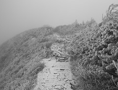 stairs in the mountains (mzyla) Tags: snow winter path mountains stairs