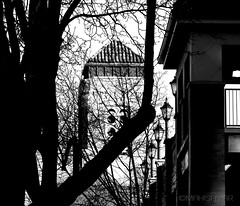 in plain sight (Mahishvar) Tags: building street art photography photo photographer black white contrast concept tree branch trees branches shadow shadows beautiful architecture architectural composition pattern geometry sky looking city urban structure style design photooftheday