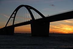 Fehmarnsund-Brücke (Elbmaedchen) Tags: fehmarn fehmarnsundbrücke vogelfluglinie belt brücke bridge sonnenuntergang sunlight sundown ostsee balticsea