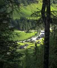 Predoi (Prettau) (giorgiorodano46) Tags: agosto2002 august 2002 giorgiorodano tauern tauri alpi alpen alps alpes altoadige sudtirolo valleaurina ahrntal predoi prettau verde green bosco forest grün holz wald