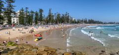 A very Australian scene (geemuses) Tags: manly northernbeaches nsw australia surfing surfboats watersea ocean sandwaves surf crew jump actionphotography extremesport surflifesavingclubs beach sport paddles boat surflifesavers panorama landscape landscapephotography view