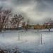Snowmagedon