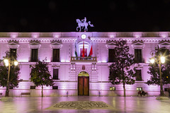 The Pink House / Andalusien - Granada (cmfritz) Tags: andalusien europa granada spanien spain pink rosa reiter langzeitbelichtung longtimeexposure nacht night palast gebäude building palazzo beleuchtung lichter canon