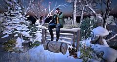Blog #205 Tm:.Creation GM20 Don't go Away Scene-Boardwalk (Suzie Coba Esquire) Tags: tm creation decor landscape outdoors snow winter broadwalk event fence secondlife