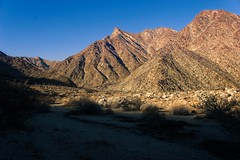 Palm canyon mountains (neil.dalphin) Tags: yellow mountain dry canyon palm anza borrego springs california desert usa america
