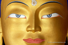 Ladakh - India (My Planet Experience) Tags: thiksey thiksay thikse monastery gompa temple maitreya future buddha statue portrait closeup gold gelug sect yellow hat leh ladakh west little tibet buddhism culture horizontal color inside indian india inde भारत ind wwwmyplanetexperiencecom myplanetexperience