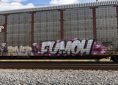 (o texano) Tags: houston texas graffiti trains freights bench benching river fumoh