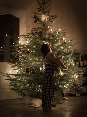 Holy Christmastree (agirygula) Tags: christmas christmastime christmastree lights teddy boy boywithteddy childhood childrenseemagic family familyshooting santa santaclaus
