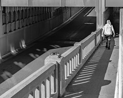 (el zopilote) Tags: albuquerque newmexico people architecture street cityscape bridges powerlines signs canon eos 5dmarkii canonef50mmf14usm fullframe bw bn nb blancoynegro blackwhite noiretblanc digitalbw bndigital schwarzweiss monochrome