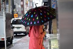 Colorful (reiko_robinami) Tags: street streetphotography rain urban umbrella tokyo japan