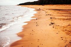 Beach | Latvia  #363/365 (A. Aleksandravičius) Tags: nikon z 7 nikonz7 z7 mirrorless baltic sea nature waves beach latvia nikkor 85mm 85 365 3652018 85mmf18g nikkor85mm nikon85mm18g f18g nikon85mm project365 363365
