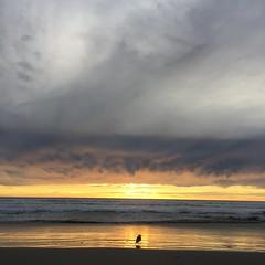 Oceanside Beach (hinxlinx) Tags: oceanside beach socal southern california
