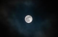 Full Moon - Supermoon (Tony Webster) Tags: minnesota superbloodwolfmoon tonywebster eclipse lunareclipse moon superblood supermoon wolfmoon eastlake unitedstatesofamerica us