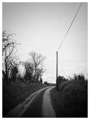 Degrees of Dullness (JulieK (thanks for 8 million views)) Tags: bw monochrome iphonese htt telegraphtuesday ireland irish wexford road rural dull telegraphpole trees outdoor 2019onephotoeachday