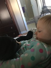 """Dani Cuddles with Darth Vader • <a style=""""font-size:0.8em;"""" href=""""http://www.flickr.com/photos/109120354@N07/46931965181/"""" target=""""_blank"""">View on Flickr</a>"""