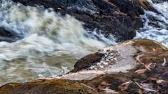 Mörrumsån (tonyguest) Tags: mörrumsån mörrum karlshamn blekinge water river motion movement rocks ice sverige sweden tonyguest