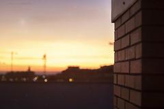 Matar la tarde (Ikaria fotografía) Tags: sky cielo atardecer sunset azotea roof bokeh bokehlights blur desenfoque colours colores exterior outdoor literature literatura canon 50mm