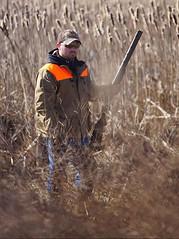Fasan hunt (jayfred65) Tags: hunting fasan pheasant outdoors shotgun autumn upland