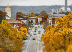 Miniature Madison (Bernie Kasper (4 million views)) Tags: art architecture berniekasper color d750 family fall effect historic histrorichomes hiking indiana jeffersoncounty light landscape leaf leaves love madisonindiana madisonindianacliftyfallsstatepark macro mainstreet nature nikon naturephotography new outdoors outdoor old outside photography park purple raw red travel tree trees unitedstates usa