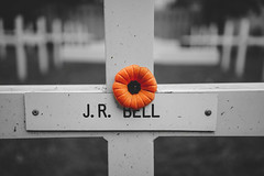 Remembrance Day (Craig's Collection) Tags: sony a7ii a7m2 35mm28 remembranceday november11 canada veteran lestweforget poppy