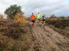 haarlerbergloop 10 km (50)