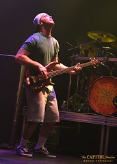 8 (capitoltheatre) Tags: thecapitoltheatre capitoltheatre slightlystoopid reggae funk punk portchester portchesterny live livemusic housephotographer