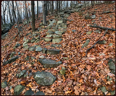 The 300 Stone Steps of Morris Plains (Markus Alydruk) Tags: 300 stonesteps steps stairs path trail hillside mountain hill forest woods legend legendary lost abandoned nj newjersey morrisplains morris morriscounty mountainwaypark hiking exploring watnongmountain watnong 300stonestepsofmorris