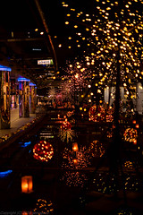 Fireworks on Ground (gemapozo) Tags: kourakuen tokyodomecity pentax night rrs illumination tokyo k1mkii japan 東京都 日本 jp hdpentaxdfa50mmf14sdmaw 夜景 東京ドームシティ イルミネーション 大地の花池