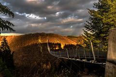 Geierlay... (st.weber71) Tags: geierlay nikon natur abendstimmung abendhimmel abendlicht abendsonne brücke brücken hängebrücke himmel wolken bäume sonne sonnenuntergang deutschland d850 herbst