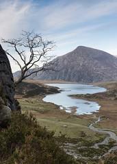 Llyn Idwal (Explored) (Esox2402) Tags: wales snowdonia llyn idwal lake water mountain tree canon6d 1740f4l