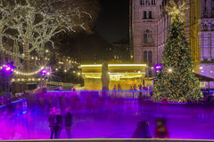 La gioia del Natale / Christmas  joy(Natural History Museum, London, United Kingdom)(Buon Natale!!!/Merry Christamas!!!) (AndreaPucci) Tags: christmas london tree uk southkensington icerink naturalhistorymuseum andreapucci carousel