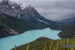 Peyto Lake (Oleh Khavroniuk (Khavronyuk)) Tags: nikon nikkor d750 canada alberta banff nationalpark national park icefields parkway peyto lake peytolake water mountains mountainside mountain candid colors colours colorful blue emerald wild nature naturaleza naturephotography sky weather storm flickr geotagged new digital travel travelalberta travelphotography tranquility holiday vacation hiking explorecanada explorealberta contrast wasser summer 365 happyplanet outdoor outside outdoors outlook bow summit bowsummit canadian rockies rocky happiness rural landscape landschaft trees woods countryside natur colour day paysage glacier