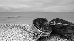 Resting (jurgenkubel) Tags: fiskeby fishing village fischerdorf landscape landschaft seascape östersjön ostsee balticsea olympus fårö sea sky beach ocean boat boot båt roddbåt