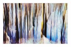 Splish Splash (brev99) Tags: d610 intentionalcameramovement watercolor luminar photoshopelements18 ononesoftware on1perfecteffects19 abstract border nikon28105 oxleynaturecenter woods nikviveza huesaturationlightness