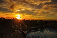 07 (morgan@morgangenser.com) Tags: sunset pretty beautiful red orange colorful evening dusk clouds blue palmtree santamonicacollege smc silhouette sun yellow cool