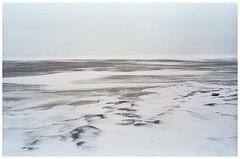not so lovely weather (juhanflick) Tags: nikonf3 nikkor28mm kodak200colorplus winter 2019 helsinki