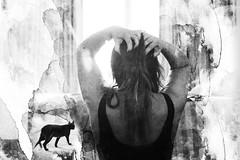 Le chat noir ([marta díez . fotografía]) Tags: me selfportrait autorretrato bw blancoynegro gatonegro blackcat misterio misterious mistery monohrome art artwork