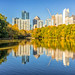 Fall colors starting to arrive in Atlanta - Piedmont Park