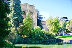 """The """"green"""" side to Palace of Fine Arts (bee.pics) Tags: greenery green garden san francisco marina district sf bay monument california architecture beautiful sky weather sunshine cali loving photography photo love city park fresh sfbay sanfrancisco nature naturelover naturephoto"""