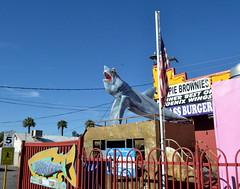 "Long Wong's Wings (Vinny Gragg) Tags: •template ""roadsideattraction"" ""roadsideattractions"" ""roadsidestatue"" ""roadsidegiants"" ""roadsidestatues"" ""roadsideoddities"" statues statue ""roadsideart"" giants signs cloud clouds restaurant restaurants longwongswings phoenixarizona phoenix arizona shark sharks sharkstatue flag flags americanflag"