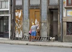 Painting (Elisa1880) Tags: porto portugal street photography straatfotografie man schilderen painting hondje hond dog ladder stairs decay verval