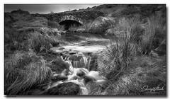 Moorland Stream (jeremy willcocks) Tags: moorlandstream dartmoor devon ukjeremywillcockd©2019fujixt3xf1024mm landscape blackandwhite mono reeds nationalpark bridge arch water stones flowing wwwsouthwestscenesmeuk jeremywillcocks
