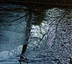 La vague, le miroir et la glace - The wave, the mirror and the ice. (p.franche busy - occupé) Tags: sony sonyalpha65 dxo photolab bruxelles brussel brussels belgium belgique belgïe europe pfranche pascalfranche schaerbeek schaarbeek parcjosaphat josaphatpark nature eau étang miroir arbre parc reflet glace froid hiver gel glaciation janvier2019 water pond mirror tree park reflection ice cold winter frost january2019
